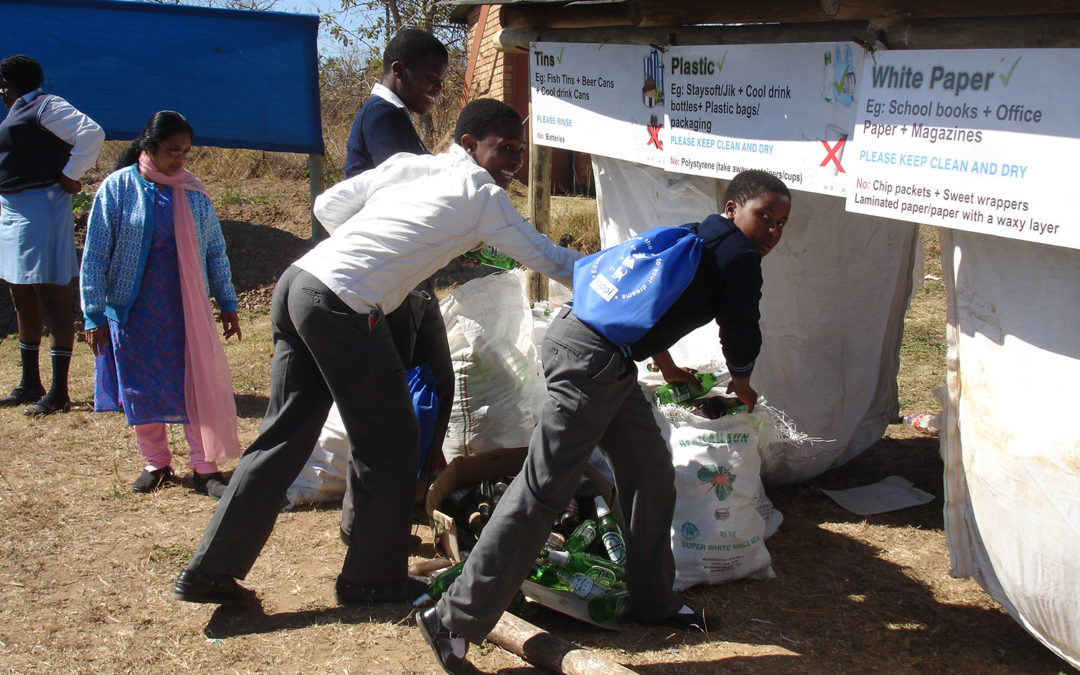Critical Thinking skills for Zero litter goal in Mutare