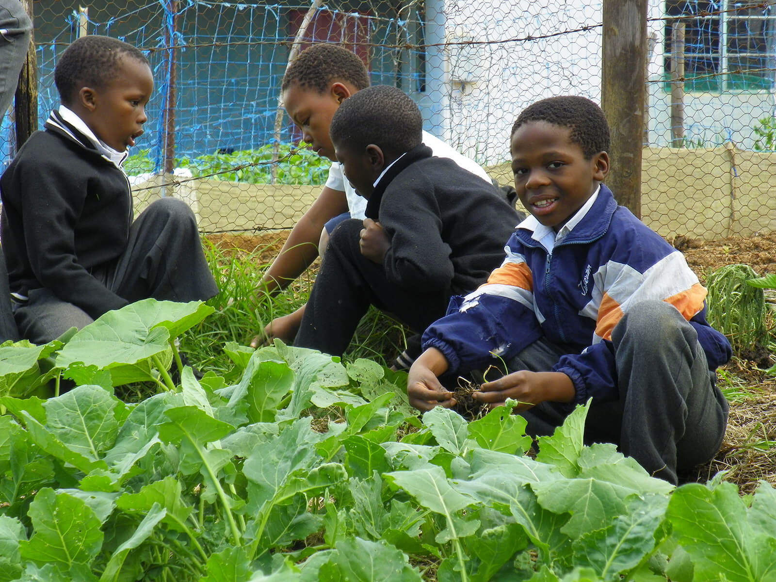 Lesotho Change Projects